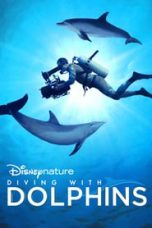 Diving with Dolphins Sub Indo